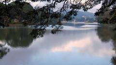 Kandy Lake - Kandy Sri Lanka (KanCanDo) Tags: water srilanka kandy laka manmadelake hillcapital