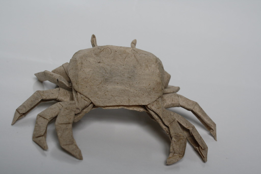 crustacean essays Guides & essays contribute scp community forum  scp-098 object class: safe  scp-098 is a species of previously unknown crustacean.