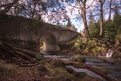 tolly014 (dunraven48) Tags: forest bridges rivers tollymore