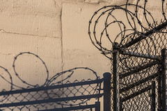 Razor Wire Topping Chain Link Fence in Seattle (Lee Rentz) Tags: seattle usa america fence spiral washington shadows waterfront northwest property security sharp chainlink pacificnorthwest northamerica barrier pugetsound secure washingtonstate protection entry elliotbay razorwire deterrent concertinawire 2013