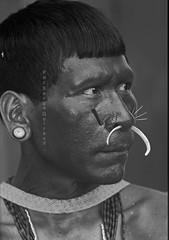 Matis (serge guiraud) Tags: brazil brasil amazon tribal xingu tribe ethnic jabiru tribo brésil plume amazonia tribu amazonie matis amazone amérique amériquedusud amérindien etnia ethnie peinturecorporelle artamérindien peuplesindigenes povoindigena sergeguiraud jabiruprod expositionamazonie artdelaplume artducorps bassinamazonien amazon'stribe amazonieindidennecom jungletribes populationautochtones