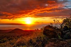 Maui Explosion (mojo2u) Tags: sunset hawaii maui roadfromhana nikon2470mm nikond700 mauihwy31