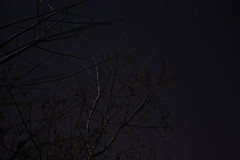 IMG_9590 (GANDALF_GREY) Tags: shower ottawa april meteor 2013 lyrid