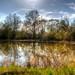 Löhne Secret Pond
