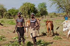 IMG_3001520650 (Alexander Macfarlane) Tags: tribes omovalley ethiopia