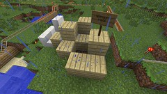 Building a First House (GumbyBlockhead) Tags: