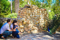 Grahm W 1yr - ChristopherAllisonPhotography-8051 (christopherallisonphotography) Tags: california family flowers summer orange sun tree love beach kids canon children mom fun spring dad play sandiego brothers military father mother peacock 7d carlsbad amore balboapark christopherallisonphotography leocarrillohistoricalpark pageschristopherallisonphotography307335859209 pageschristopherallisonphoa pageschristopherallisonphotography307335859209quot