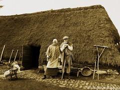 Black House 2 (Rick Ellerman) Tags: old house black scotland actors picasa highland oldfashion actor oldfashioned cairngorms blackhouse highlandfolkmuseum hs30