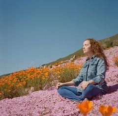 (ryan schude) Tags: travel flowers portrait girl sunshine rolleiflex bigsur hippy lifestyle bluesky roadtrip poppies denim hillside levis kodakportra400nc indianstyle crisscrossapplesauce laurenrandolph