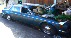 1970S DAIMLER 4.2 (Yugo Lada) Tags: old classic cars abandoned car photo nice rusty retro vehicle british 1970s westcott rare 42 daimler leyland hoarder mouldy