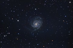 M101 w/AT6RC (Astronewb2011) Tags: spiral astro galaxy m101 Astrometrydotnet:status=solved ioptron d5100 at6rc Astrometrydotnet:version=14400 astronewb zeq25 Astrometrydotnet:id=alpha20130578953548
