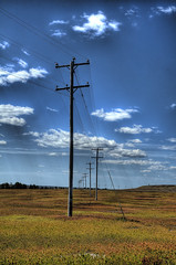 Telephone Poles in Blueberry Field (KimCarpenter NJ) Tags: maine telephonepoles blueberryfield jonesboromaine