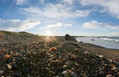 Beach (borealnz) Tags: ocean morning sea sun bird beach rocks waves stones gull low fisheye flare getty riverton samyang lowangleview