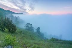 Nebelstimmung bei Sonnenaufgang oberhalb Eichsttt (Kretzsche93) Tags: sun fog sunrise nebel may himmel wolken mai sonnenaufgang altmhltal eichsttt altmhl nebelmeer nebelstimmung