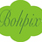 Bohpix icon