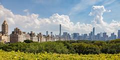 New York City (Robert Wash) Tags: nyc newyorkcity ny newyork centralpark manhattan midtown metropolitanmuseumofart