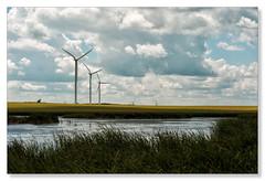 Summer breeze (Northern Pike) Tags: windturbine stleon manitoba wetland fields cumulus cloud