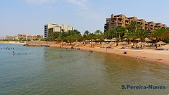 Aqaba Beach, Red Sea, Jordan (ssspnnn) Tags: mar sea seashore ocean redsea marvermelho marrojo panasonic lumixfz200 jordan jordania spnunes snunes spereiranunes nunes aqaba mowenpick