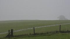 Lakeland Summer (warth man) Tags: d750 nikon70300mmvr summer lakeland wet stream newstream