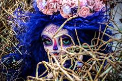 Calavera (Kiky) Tags: calavera pullip doll custom princezs sombre effrayant