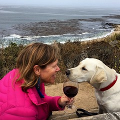 Nancy, Nala & wine at Carmel River State Beach (Nancy D. Brown) Tags: californiawinemonth pointlobos wine carmel nancydbrown nala labradorretriever ocean pacificocean