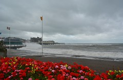 DSC_0418 (stephanie.burgess97) Tags: aberystwyth ceredigion wales uk summer storm flowers promenade prom bandstand waves spray rough sea seaside beach grey sky