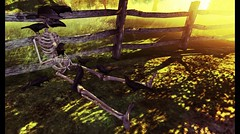 I wish to LIVE... Why do you wish to die? (drayton.miles) Tags: spell zenith half deer shai serendipity skeleton skull sword death crwos birds ravens feild live want wich second secondlife sl gacha sun sunset sunrise