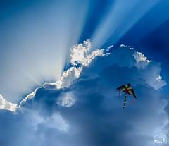 Sky & Kite.... Freedom!