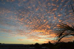 Santo Sunset