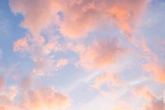 Cotton Candy Skies (like / want / need) Tags: philadelphia sky sunset pinkclouds