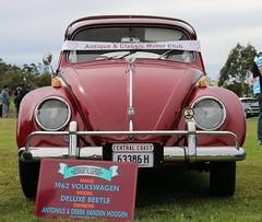 1962 Volkswagen Deluxe Beetle (jinba.ittai) Tags: centralcoastcarscoffee 1962beetle volkswagen deluxebeetle burgundy beetle