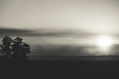 Misty sunset. (Pablin79) Tags: mist sky landscape fog sunset winter nature sun light clouds tree white monochrome black shadows dawn afternoon argentina silhouettes misiones posadas