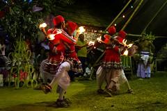 devol madu fire dancing duets-2 (Priyantha de Alwis) Tags: culture dance devolmadu gammadu ginimadu lowcountrydancing occult shanthikarma srilankantraditionaldancing traditionaldancing srilanka priyanthadealwis ginimadushanthikarma devolmadushanthikarma gammadushanthikarma dancing traditionaldance srilankantraditionaldance traditionallowcountrydancing srilankantraditionallowcountrydancing paranormal supernatural metaphysical ritual rituals srilankaritual srilankarituals bringpeaceandprosperity tribal srilankatribal shaman shamanism pattini hindupattini hindupattinicult healing psychologicalhealing healingritual healingrituals astrology pooja pattinipooja religion belief healingceremony healingceremonies vishnudeviyo samandeviyo kataragamadeviyo nathadeviyo narangodapaluva batuwattatemple batuwatta ethnicreligion ethnicreligions shamanicbeliefs shamanicpractices religiousecstasy supernaturalrealms supernaturaldimensions indigenousreligions contactspirit priest psychologicalcrisis exorcising exorcism paththini hindupaththini hindupaththinicult
