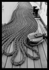 Aussire (chris_rapenne) Tags: lanyard mooringrope