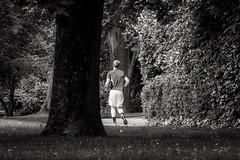 in the park (RalfK61) Tags: lenstagger 06 wiesbaden kurpark 2016 innenstadt kurhaus juni