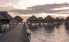 Water villas of sunrise at Moorea pearl beach Tahiti (sapphire_rouge) Tags: moorea  polynesia  island francehpolynesia  beach   tahiti  frenchpolynesia resort society pool younggirl pearlbeach societyislands atoll sunrise