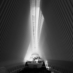 Satisfaction (jamarcallender@rocketmail.com) Tags: people satisfaction art building architecture bold strong sophisticated elegance symmetry worldtradecenter iphone iphoneography blackandwhite blackandwhitephotography balance