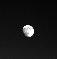 DSC_0004e ~ Luna (BDC Photography) Tags: pipecreek texas usa nikondslrcamera nikon nikond200 nikonafsnikkor300mmf4difedlens bwfpro77mm010uvhaze1xmrcfilter luna moon slikpro700dxtripod