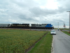 NS 4000 and the Erie Heritage unit near Latty Ohio (Matt Ditton) Tags: ns 4000 latty ohio erie heritage unit