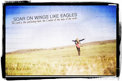 Soar on Wings like Eagles (Forgiven!) Tags: love girl field hope wings open arms god jesus grow like bible 40 isaiah eagles prophet scripture praise soar weary weak stumble