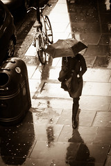 "Brolly Solo • <a style=""font-size:0.8em;"" href=""http://www.flickr.com/photos/79232773@N03/8621898475/"" target=""_blank"">View on Flickr</a>"