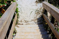 Beach Stairs are always sandy.  Happy S4S! (LarryJay99 ) Tags: ocean wood beach water stairs wooden sand sandy ss places stairway iphoto palmbeach atlanticocean palmbeachcounty canonefs60mmf28macrousm s4s stairssaturday ilobsterit canonefs60mmf28macrousa
