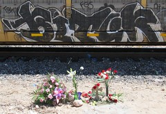 R.I.P. John Michael Poore-Raffai // Biter (666isMONEY   & ) Tags: train graffiti memorial tbk biter paintedtrains bitck johnpoore johnmichaelpoore