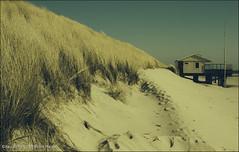 Happy holidays on Ameland (zilverbat.) Tags: nature strand vintage island sand wind outdoor nederland naturallight zee ameland duinen friesland sanddunes eiland kust strandhuisje kustlijn helmgras zeewater zilverbat