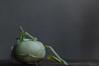 further transmissions from planet kohlrabi (postbear) Tags: food white green kitchen vegetables leaves flesh rind leaf skin vegetable cabbage edible cabbages kohlrabi robfordasshole destroycraigslist robfordisanasshole robfordandstephenharperaredisgustingbigots robfordisalyingsackofshit allconservativesarefilth likeallbulliesrobfordisachickenshitcoward robfordisafraidofeverything robfordisastupidbitch marywalshformayororprimeminister thenewmapfunctionisterrible robfordhasneonazisforfriends foundoutreadingisdifficult robfordisadisgustingfuckingthief thenewuploaderisalsoterrible helpourformermayorisastupidclown formermayorrobfordlikescottaging call911theformermayorsbeatinghiswifeagain richwhiteconservativesbuyjusticeyetagain robfordsexuallyassaultswomen serialkillersshowcommittment