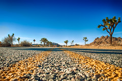 Always Take Advantage Of Your Situation (hbmike2000) Tags: road vanishingpoint nikon horizon joshuatree d200 hdr joshuatreenationalpark explored ourdailytopic hbmike2000 cansomeonecomegetmeitshotouthere