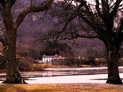 betwixt (nuframe) Tags: uk trees house lake english water spring scenery cottage lakedistrict edge cumbria derwentwater keswick between betwixt nuframe