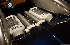 Ettore Arco Isidoro Bugatti (SAMMCEACHERN) Tags: bugatti veyron