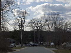 _1080868 (Boneil Photography) Tags: trees silhouette ma prime pentax takumar massachusetts panasonic m42 manualfocus 50mmf14 haverhill screwmount supertakumar m43 wardhill microfourthirds boneilphotography dmcg10 brendanoneil