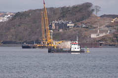 Forth Replacement Crossing 2013 (image engineer) Tags: barge firthofforth southqueensferry northqueensferry forthriver civilengineering bridgeconstruction cablestayedbridge workbarge marineconstruction ferrytoll forthreplacementcrossing cofferdamstugs